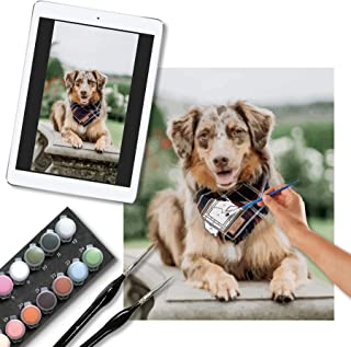 Photo to Personalized Paint by Numbers for Adults Framed DIY Oil Painting Paintworks on Canvas for Beginners, New Painters...