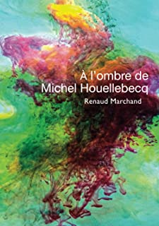 À l'ombre de Michel Houellebecq (French Edition)