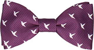 Hummingbirds Quirky Pre Tied, Self Tying Bow Ties