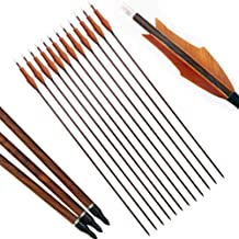 AMEYXGS 12pcs Archery Carbon Arrows 29.5 inches Target Practice Arrows 1000 SpineHunting Arrows with 2 Real Turkey Feathers for Compound Bow and Recurve Bow