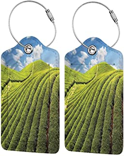 Baggage Travel Tag, Personalized Luggage Tag, Address Card and Privacy Cover Nature Cultivation Fresh Spring (1,2 & 4 Pack)