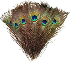 """Natural Peacock Feathers 10""""-12"""" 30pcs for Craft Wedding Christmas Décor by Blisstime"""