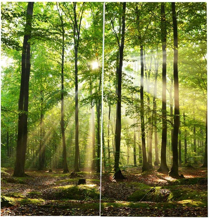 上品 Forests Eyelet 商品 Curtain Sunlight Curtains Shading Printing Balco