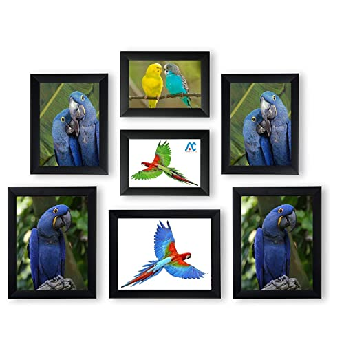 Aadinath Collection Photo Frame Collage