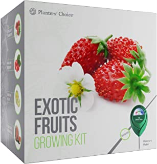 Planters' Choice Exotic Fruits Growing Kit - Everything Included to Easily Grow 4 Unique Fruits - Strawberries, Goji Berries, Honeydew, Watermelon + Moisture Meter