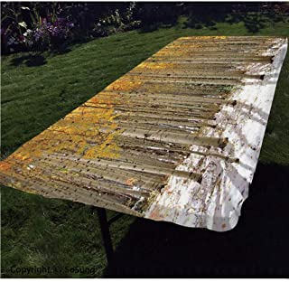 Farm House Decor Polyester Fitted Tablecloth,Aspen Trees with Golden Leaves in Snow Forest in Early Winter Time Landscape Rectangular Elastic Edge Fitted Table Cover,Fits Rectangular Tables 48x24