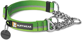 dog collar with nameplate uk