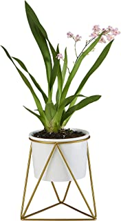 FLOWERPLUS Planter Pot Indoor, 4.33 Inch White Ceramic Medium Succulent Cactus Flower Plant Round Bowl with Metal Stand Holder and Plants Sign for Indoors Outdoor Garden Kitchen Decor (Golden)