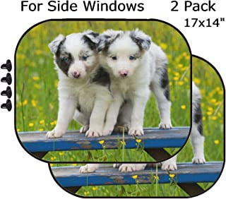 MSD Car Sun Shade - Side Window Sunshade Universal Fit 2 Pack - Block Sun Glare, UV and Heat for Baby and Pet - Border Collie Dogs on a Garden Bench Image 36185431 Customized Tablemats Stai