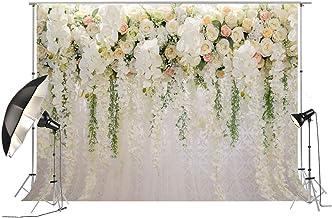 Suchergebnis Auf Für Blumenwand Hintergrund