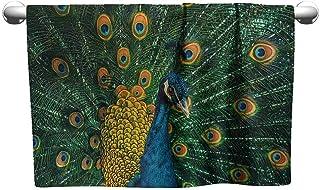 3dRose Danita Delimont Birds Adult T-Shirt XL Courtship Dance Black-Necked Stilts ts/_313951