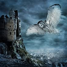 CSFOTO 5x5ft Background for Evil Castle Winged Owl Background Scary Terrible Halloween Photography Backdrop Horror Night Party Decoration Blurry City Child Kid Photo Studio Props Wallpaper