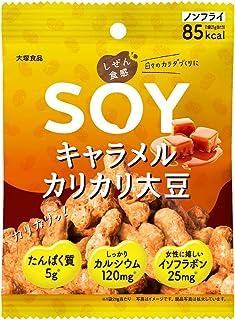 大塚食品 しぜん食感 Soy キャラメルカリカリ大豆 21g ×6袋