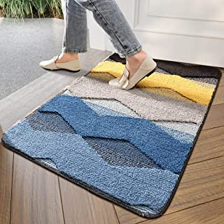 "DEXI Indoor Doormat Front Door Rug, 20""x32"" Absorbent Machine Washable Inside Door Mat, Non Slip Low-Profile Entrance Rug for Entry, Back Door, Colorful Wave"