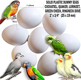DummyEggs Stop Laying! Cockatiel, Quaker Parrot, Green Cheek, Lorikeet, Ringneck Dove - Non-Toxic White Solid Plastic Realistic 1