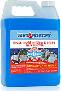 WET & FORGET .75 Gallon Moss, Mold, Mildew & Algae Stain Remover