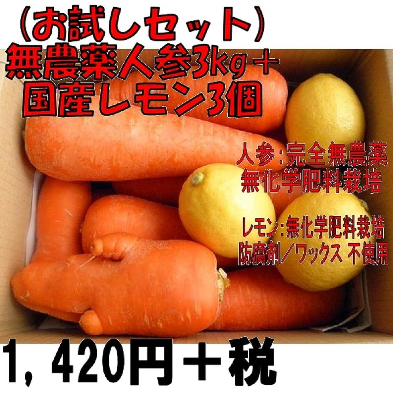 (お試しセット)無農薬人参3kg+無農薬国産レモン3個