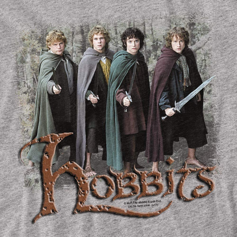 Lord of The Rings Hobbits Unisex Youth T Shirt, Athletic Heather, Small
