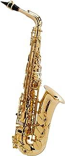 Best selmer axos alto saxophone Reviews