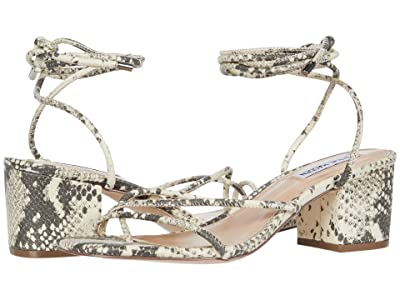 Steve Madden Impressed (Natural Snake) Women