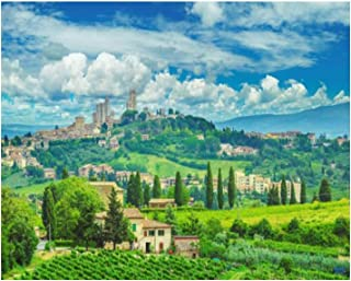 "16x20"" san gimignano in Tuscany and The Italian Countryside Vineyard Paint by Numbers Kits for Adults Kids DIY Wall Art Pi..."