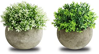 THE BLOOM TIMES 2 Pcs Fake Plant for Bathroom/Home Office Decor, Small Artificial Faux..