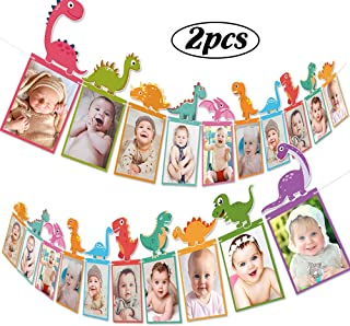 Dinosaur Photo Banner Decorations - Dinosaur Themed Baby Birthday Party Supplies Ornaments for Baby Shower Birthday Decoration 2pcs