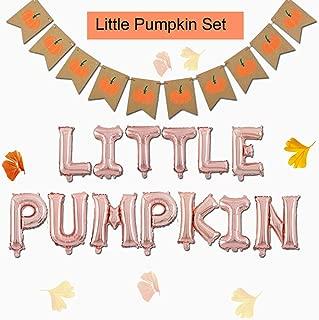 Fall Little Pumpkin Baby Shower Banner Decorations 16