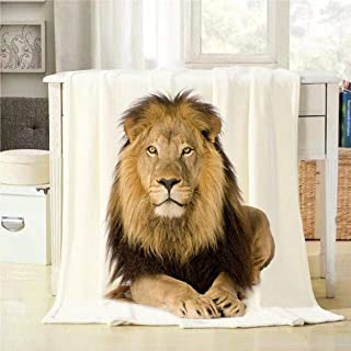 Mugod Lion Throw Blanket Panthera Leo in Front of a White Background Decorative Soft Warm Cozy Flannel Plush Throws Blankets for Baby Toddler Dog Cat 30 X 40 Inch