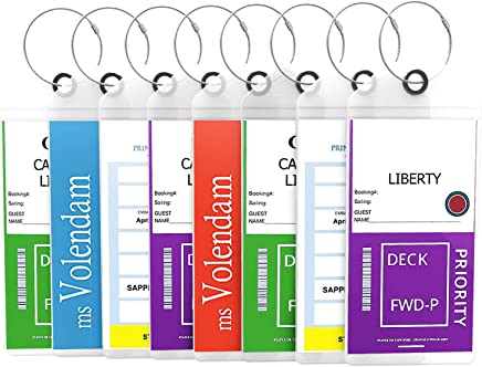 Cruise Tags Luggage Etag Holders Zip Seal & Steel Loops Thick PVC (4 Pack - Clear)