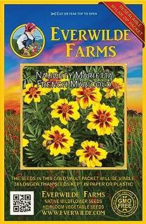 Everwilde Farms - 500 Naughty Marietta French Marigold Wildflower Seeds - Gold Vault Jumbo Seed Packet