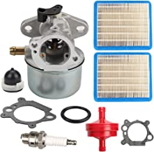 Wellsking 799868 Carburetor Carb for Briggs & Stratton 694202 693909 692648 499617 498170 497586 498254 497314 497347 497410 799872 790821 498255 14111 with Tune Up Kits