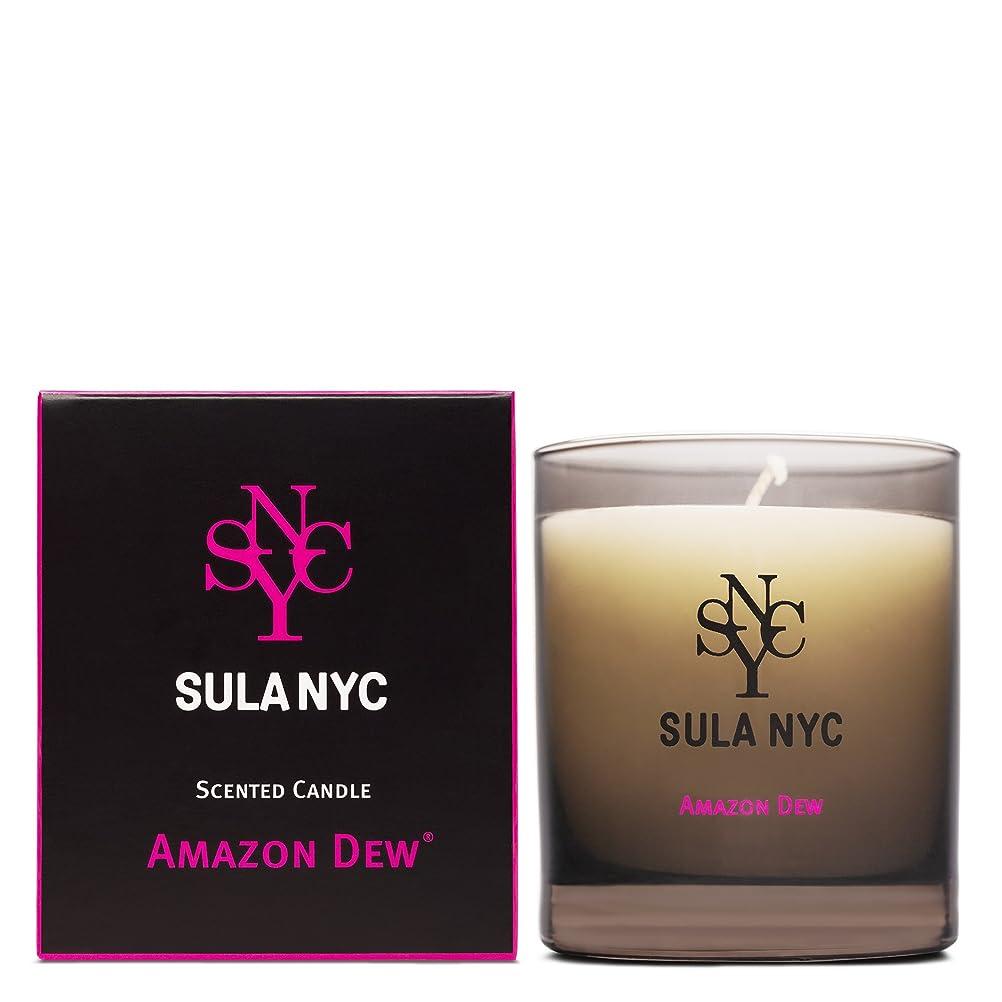天才怪物滞在SULA NYC SCENTED CANDLE AMAZON DEW スーラNYCセンティッドキャンドル アマゾン?デュー