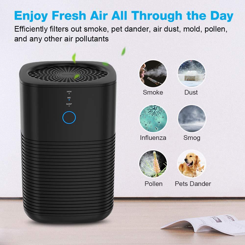 Purificadores de aire GBlife para el hogar con filtro HEPA 3 en 1 ...