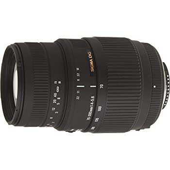 Sigma 70-300mm f//4-5.6 SLD DG Macro Lens with Built in Motor for Nikon Digital SLR Cameras Professional Kit