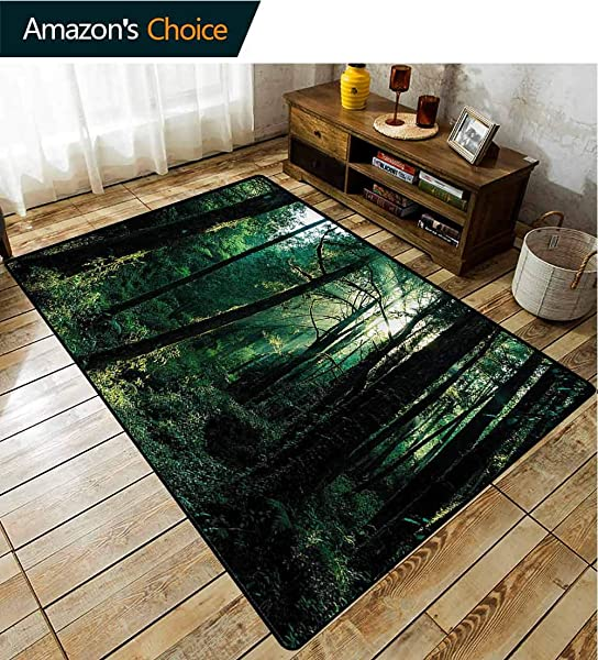 TableCoversHome Nature Traditional Area Rug Living Room Sunset In Woods Trees Pattern Printing Rugs Fashionable High Class Living Dinning Room 2 X 6