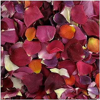 Rose Petals 15 Cups. Romantic Rendezvous Preserved Freeze Dried Rose Petals. Wedding Decoration.