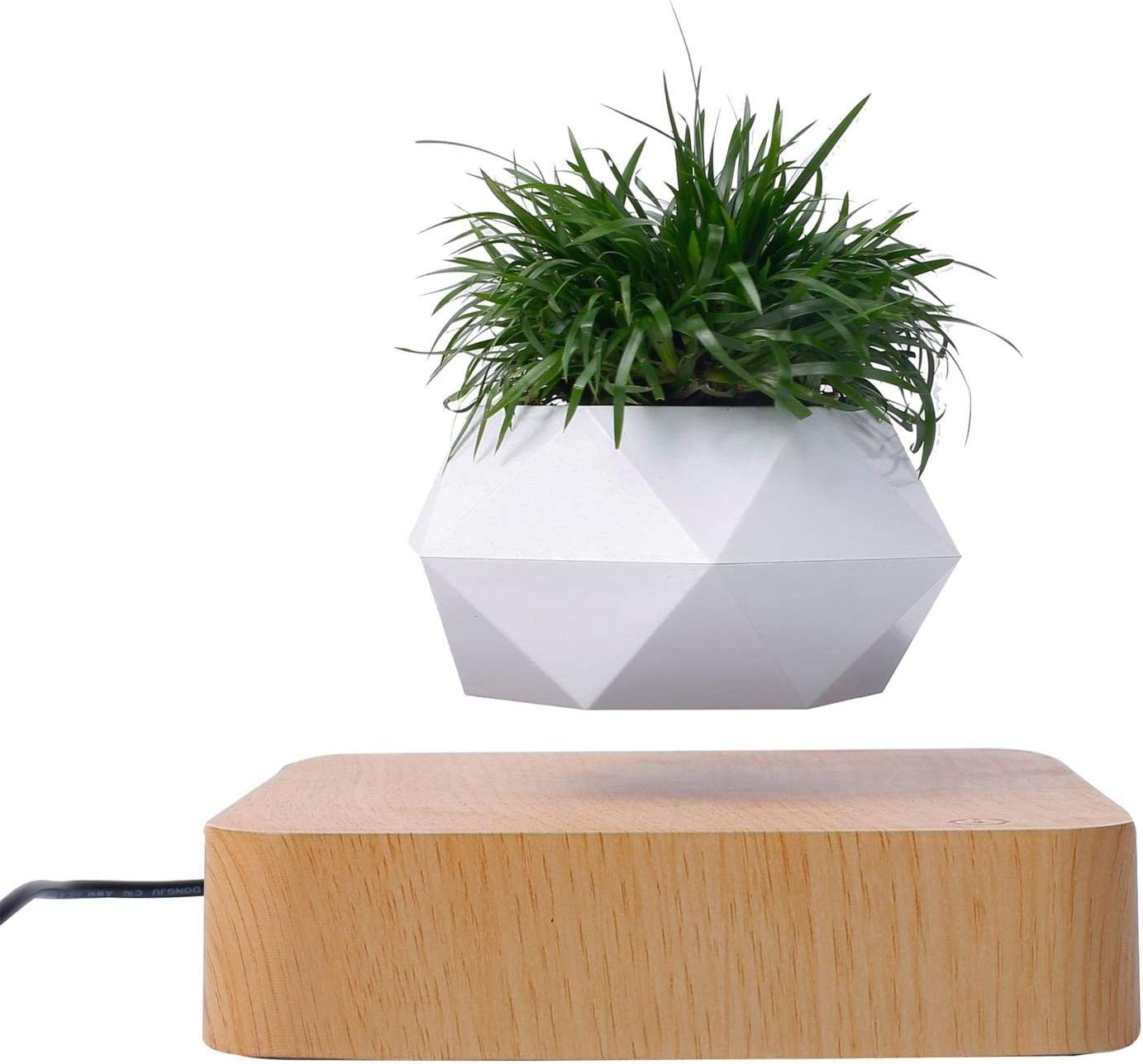 Levitating Plant Pot Display 格安 価格でご提供いたします Bonsai Air Magnetic 現金特価
