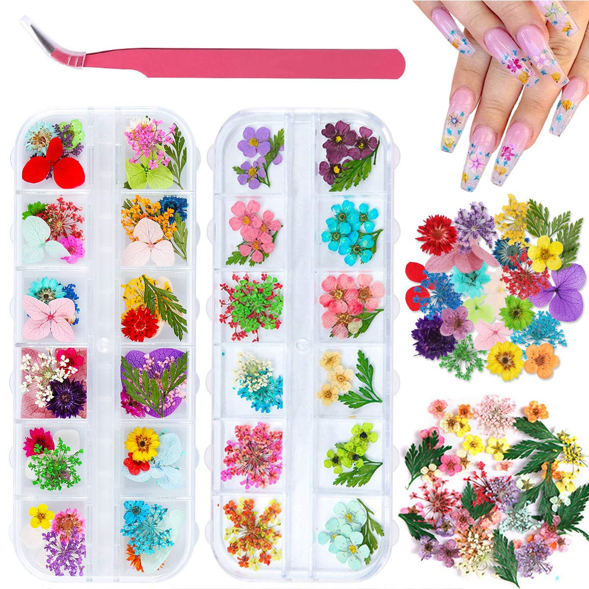 2 Boxes OFFicial Dried Flowers for Nail Colors National uniform free shipping Dry Flowe Art 24 KISSBUTY