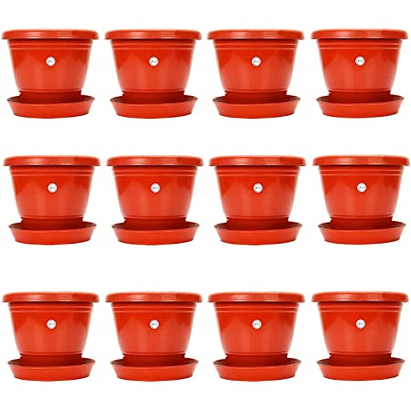 Kraft Seeds Plastic Pot with Bottom Plate, Red, 8-inch, Pack of 12