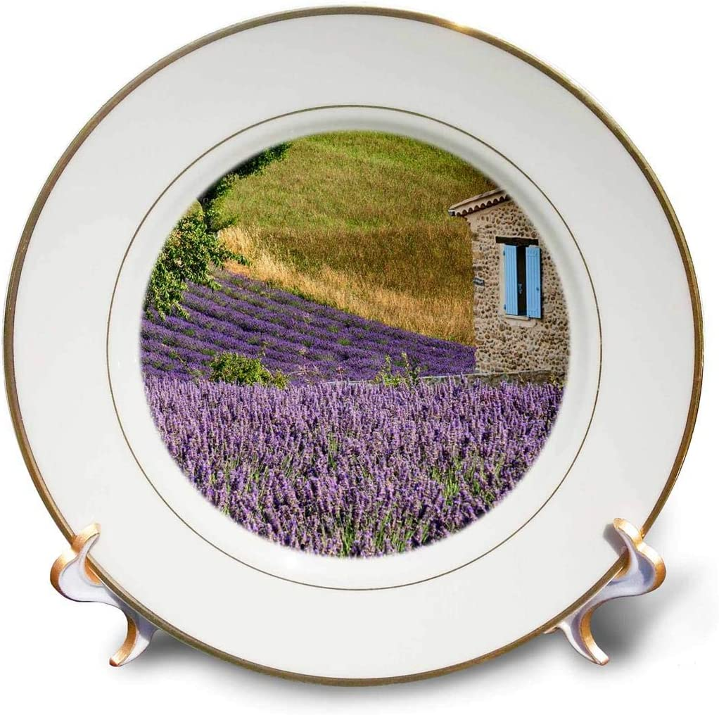 3dRose France Luxury goods Provence. Lavender Popularity Fields A Plate 8