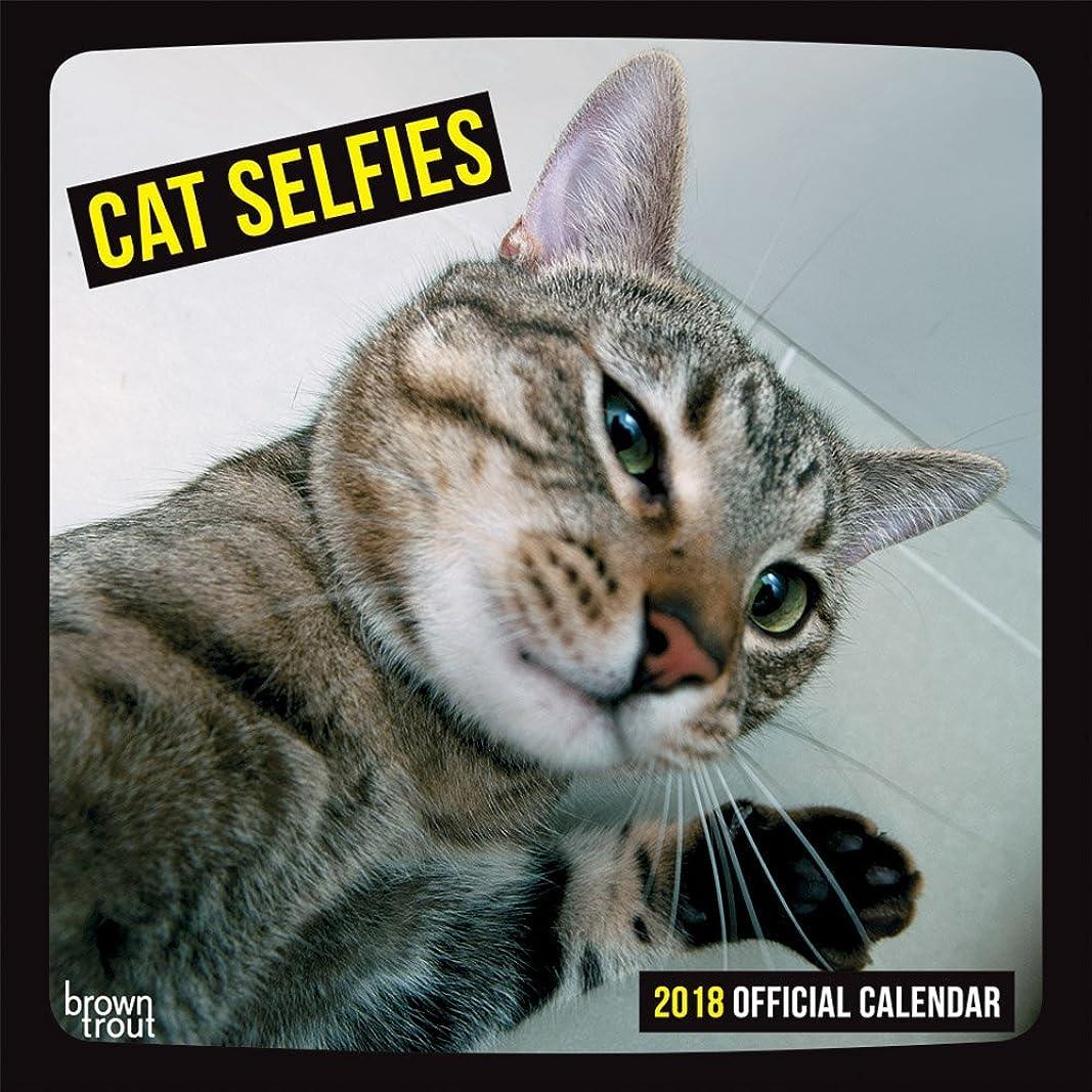 地下鉄フィードハッピー2018 Cat Selfies Wall Calendar