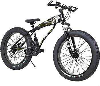 Halitaa Fat Tire Bike