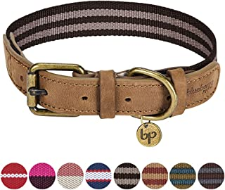 Blueberry Pet 11 Designs Vintage Polyester Webbing & Genuine Leather Combo Dog Collars Leashes