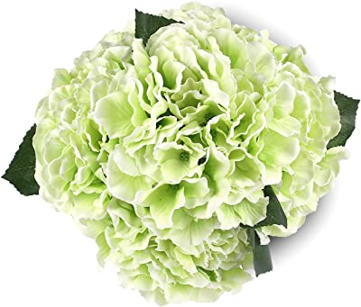 Amazon Com Green Artificial Hydrangea Silk Flowers 5 Heads Soledi