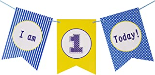 Brcohco I'm 1 Today Cute Highchair Banner 1st Birthday for Baby First Birthday Party Decoration Supplies(Blue,Yellow)