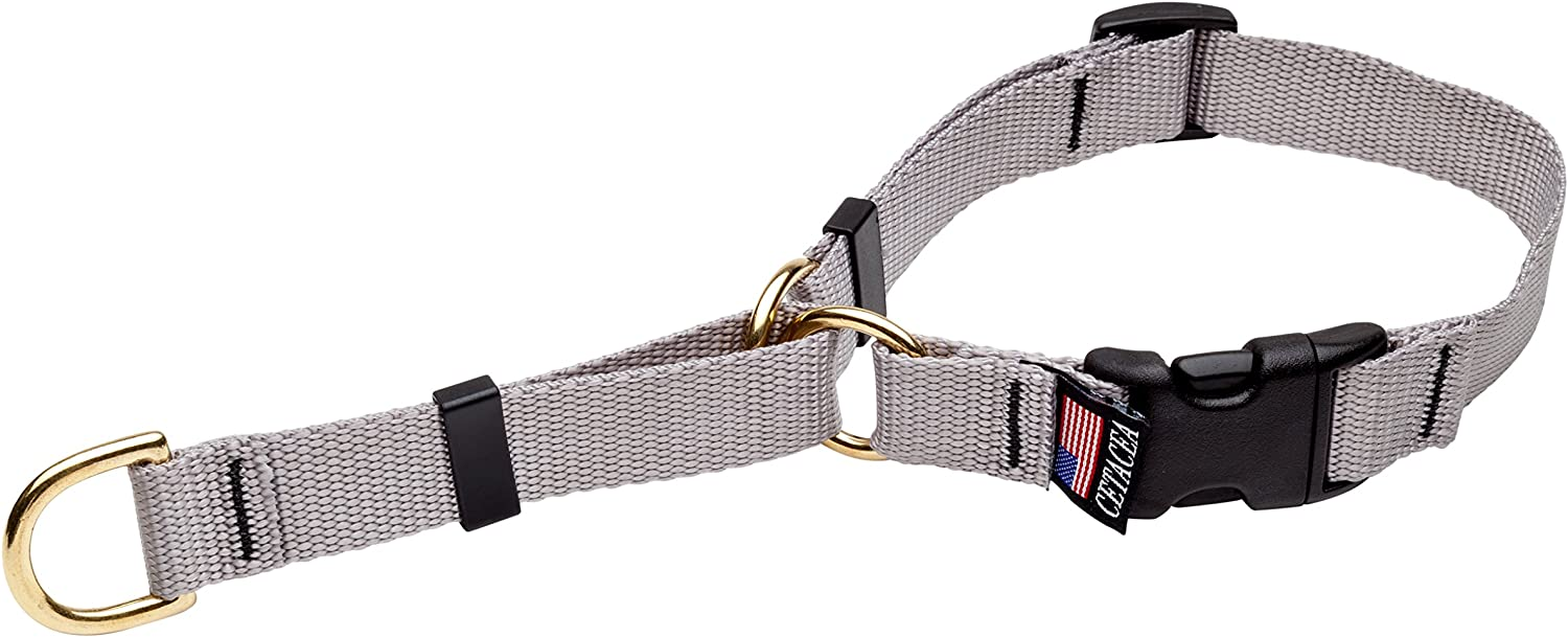 Cetacea Soft Martingale Collar, Large, Silver