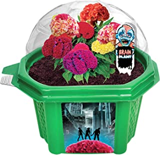 Best grow your own monster kit Reviews