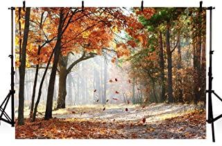 MEHOFOTO Gold Autumn Scene Forest Trees Photo Studio Booth Backdrops Maple Leaves Tree Fall Scenery Photography Backgrounds 7x5ft