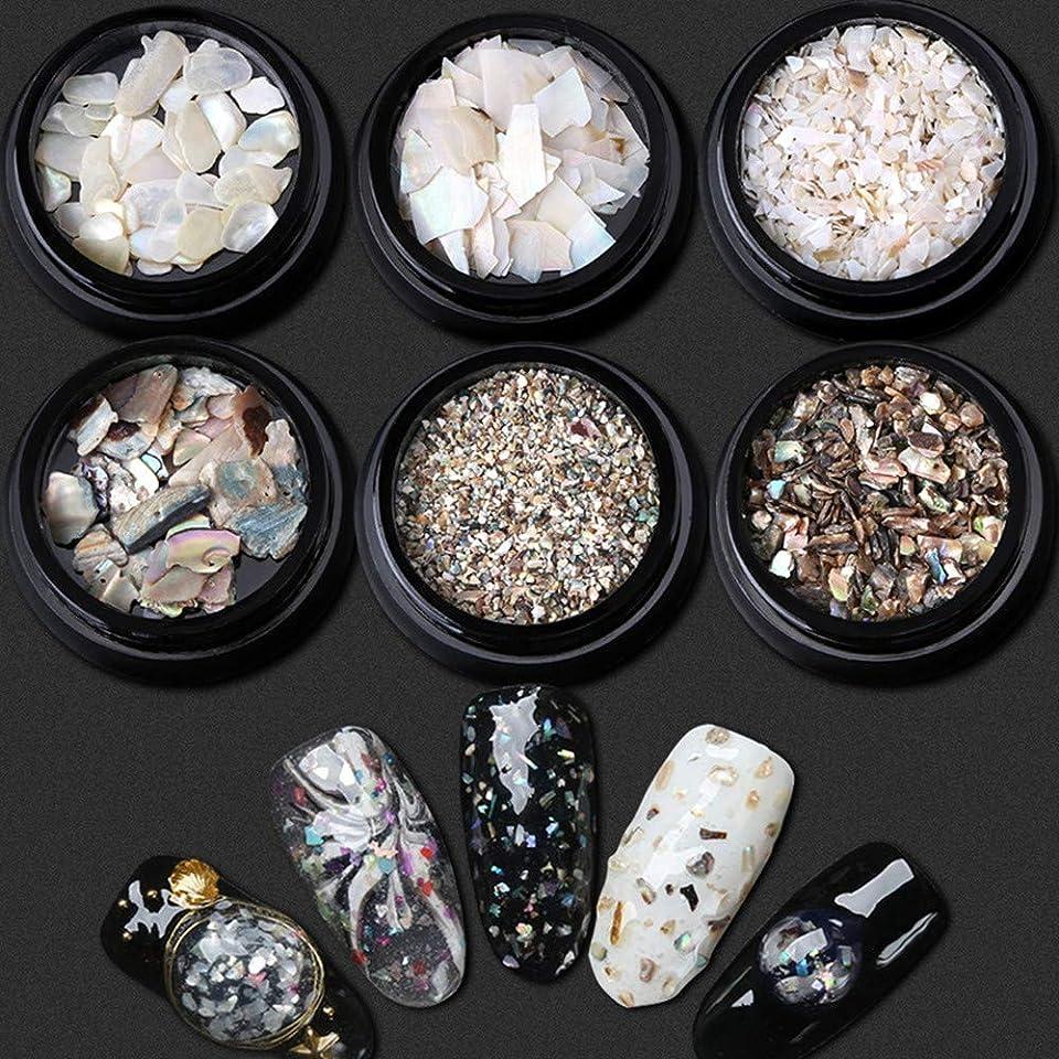 束告白見るKingsie シェルフレーク 6個セット 天然 貝殻 ジェルネイル ネイルパーツ ネイルデコレーション ネイル石パーツ UV レジン 封入素材